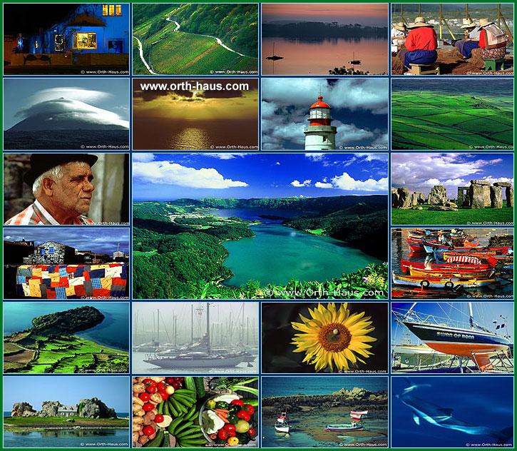 foto foto orth bilddatenbank foto bild und dia digital und